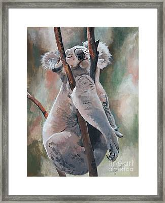 Its About Trust - Koala Bear Framed Print