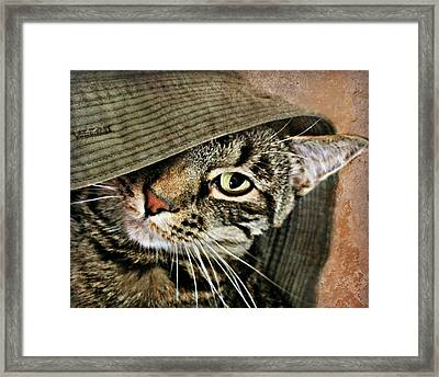 It's All About Me Framed Print by Kathy M Krause