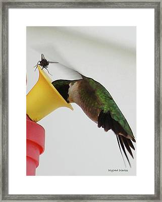 Its All About Sharing Framed Print by DigiArt Diaries by Vicky B Fuller