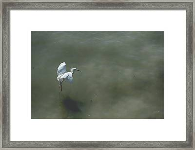 It's All In The Takeoff Framed Print