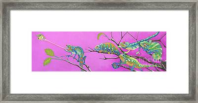 Its All Just An Illusion Framed Print by Tracy L Teeter