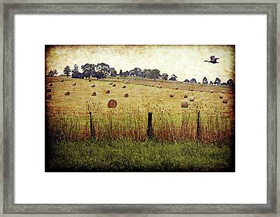 Framed Print featuring the digital art Its Baling Time by Margaret Hormann Bfa