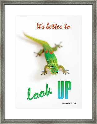 Its Better To Look Up Framed Print