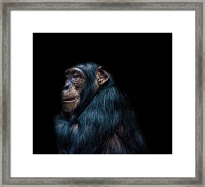 Its Cold Framed Print