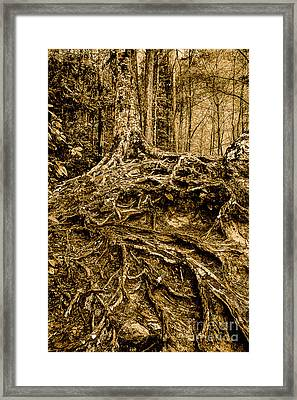 It's Complicated Framed Print by Michael Eingle