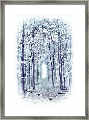 Its In The Trees Framed Print by Tim Gainey