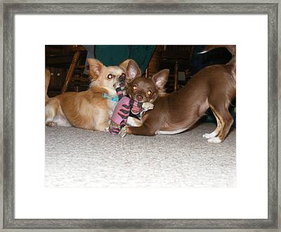 It's Mine Framed Print by James and Vickie Rankin