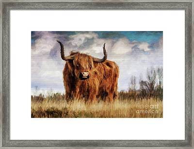 It's My Field By Sarah Kirk Framed Print by Sarah Kirk