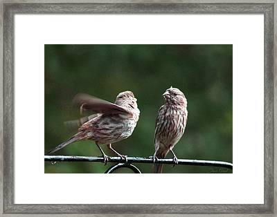 It's My Turn Framed Print