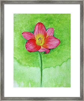 It's My World Framed Print by Anjali Vaidya