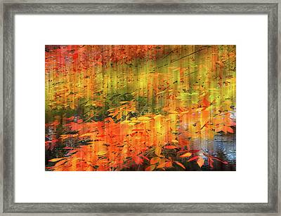 Framed Print featuring the photograph It's Nature's Way by Jessica Jenney