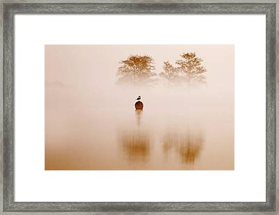 It's Oh So Quiet Framed Print by Roeselien Raimond