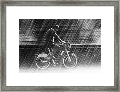 It's Raining Cats And Dogs Framed Print by Christian Muller