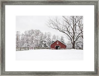 It's Snow Mesmerizing Framed Print by Benanne Stiens