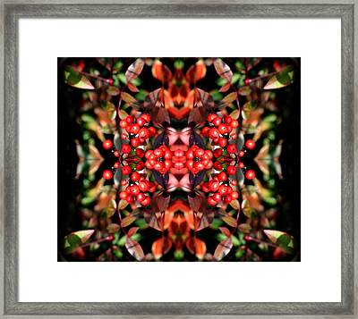 It's The Berries Abstract Framed Print by Linda Phelps