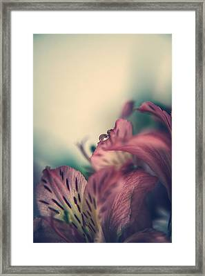 It's The Little Things Framed Print by Laurie Search