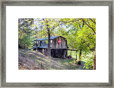 It's The Real Thing Framed Print by Lorraine Baum