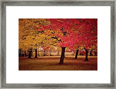 It's Time To Turn Framed Print by Linda Unger