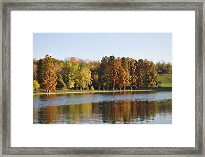 It's Up To You To Express Framed Print by Georgeta  Blanaru