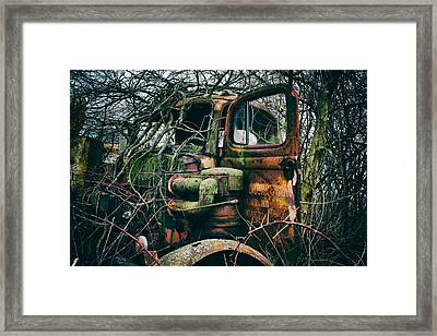 I've Created A Monster  Framed Print by Off The Beaten Path Photography - Andrew Alexander