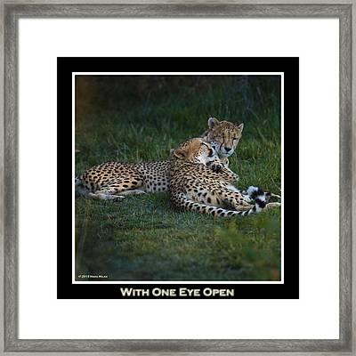 I've Got My Eye On You Framed Print by Mark Milar