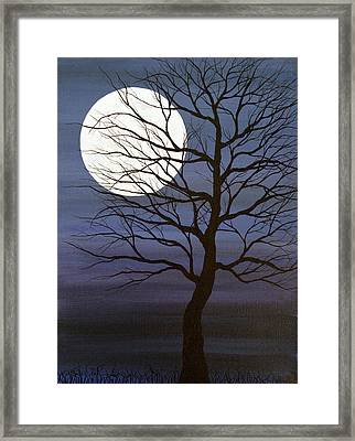 I've Touched The Moon Framed Print