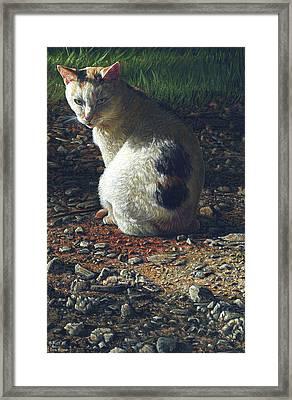 Ivy Framed Print by Cara Bevan