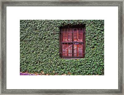 Ivy House Framed Print by JAMART Photography