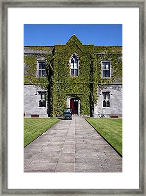 Ivy League Framed Print by Joe Burns