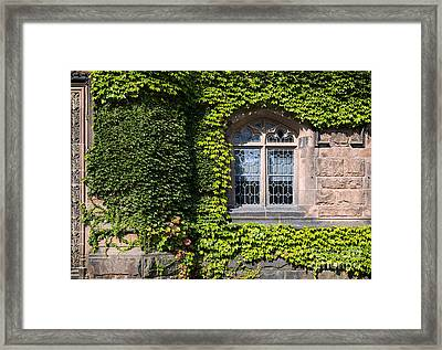 Ivy League Framed Print by John Greim