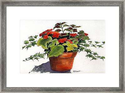 Ivy League Framed Print by Marsha Elliott