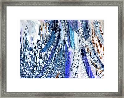 On The Upswing Framed Print