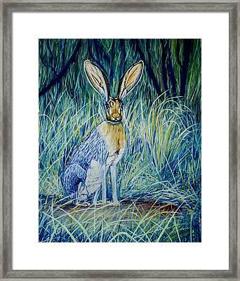 Jack Rabbit Framed Print by Manuel Lopez