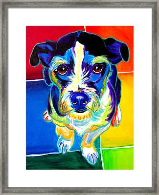 Jack Russell - Pistol Pete Framed Print by Alicia VanNoy Call