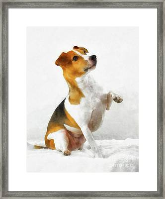 Jack Russell Terrier Framed Print by Esoterica Art Agency