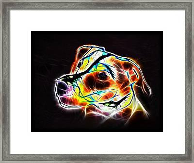 Jack Russell Terrier Luminous Framed Print