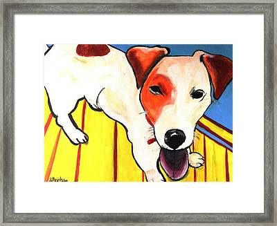 Framed Print featuring the painting Jack Russell Terrior- Peanut by Laura  Grisham