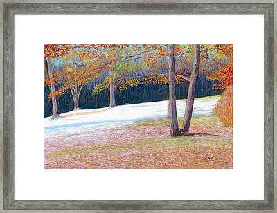 Jack Tree In Early Winter Framed Print by Rae  Smith PSC