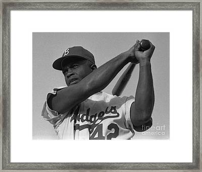 Jackie Robinson Swinging A Bat In Dodgers Uniform Framed Print by Celestial Images