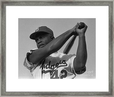 Jackie Robinson Swinging A Bat In Dodgers Uniform Framed Print