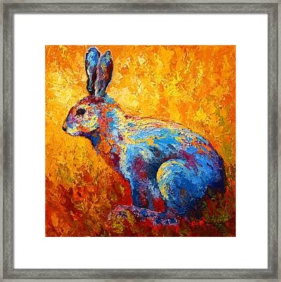 Jackrabbit Framed Print by Marion Rose