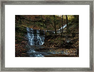 Jackson Falls Framed Print by Larry Braun