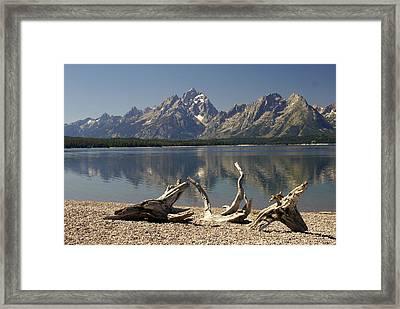 Jackson Lake 1 Framed Print by Marty Koch