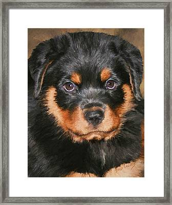 Jacob Framed Print by David Wagner