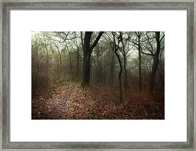 Jacomo Trail Framed Print by Michael Rosell