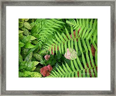 Jacqueline's Garden - Camaraderie Of Textures Framed Print by Lucyna A M Green