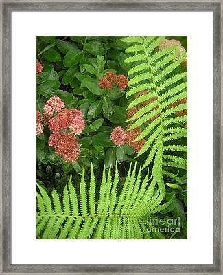 Jacqueline's Garden - Camaraderie Of Textures Too Framed Print by Lucyna A M Green