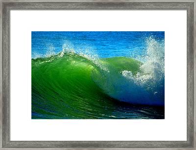 Jade Cascade Framed Print by Dianne Cowen