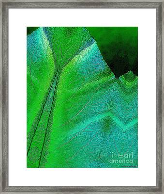 Jaded Framed Print by Sandra Gallegos