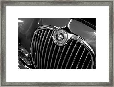 Jaguar Framed Print by Audrey Venute